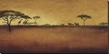 Serengeti I