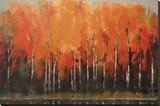 Birch Shoreline