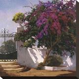Menorca Home