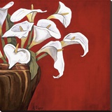 Callas on Red