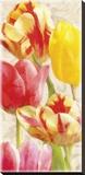 Glowing Tulips I
