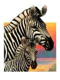 """""""Zebras """"June 25  1932"""