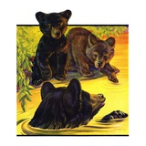 """Bear and Cubs in River ""August 25  1934"