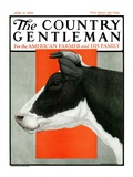 """Black and White Cow in Profile "" Country Gentleman Cover  July 21  1923"