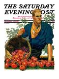 """Bushel of Apples "" Saturday Evening Post Cover  November 14  1931"