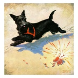 """Dog and Firecrackers ""July 1  1936"