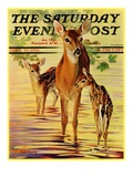 """Doe and Fawns "" Saturday Evening Post Cover  April 29  1933"