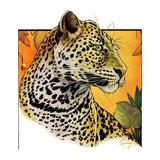 """Leopard ""August 29  1931"