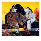 """Retriever with Pheasant ""November 1  1934"