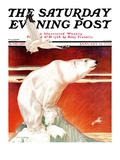 """Polar Bear on Iceberg "" Saturday Evening Post Cover  January 14  1933"