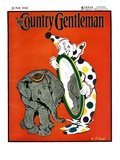 """Clown and Elephant "" Country Gentleman Cover  June 1  1932"