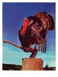 """""""Turkey on Hatchet """"November 1  1941"""