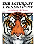 """Tiger Head "" Saturday Evening Post Cover  September 18  1926"
