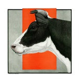 """""""Black and White Cow in Profile """"July 21  1923"""