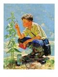 """""""Boy Botanist """"August 27  1932"""