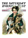 """Pugs in Lap "" Saturday Evening Post Cover  November 9  1929"