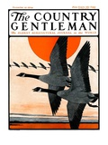 """Flock of Geese in Formation "" Country Gentleman Cover  November 15  1924"