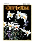 """Easter Lilies "" Country Gentleman Cover  April 1  1933"