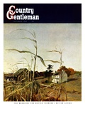 """Autumn Cornfield "" Country Gentleman Cover  October 1  1950"