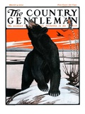 """Bear and Robin Welcome Spring "" Country Gentleman Cover  March 14  1925"