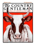 """Texas Longhorn "" Country Gentleman Cover  February 9  1924"