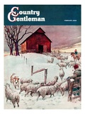 """Herding Sheep into Barn "" Country Gentleman Cover  February 1  1946"
