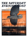 """Marsh Bird "" Saturday Evening Post Cover  October 3  1925"