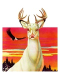 """Albino Deer ""January 8  1938"