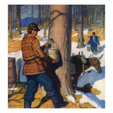"""Gathering Maple Syrup ""March 1  1927"