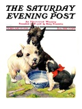 """Cat Guards Bowl of Milk "" Saturday Evening Post Cover  February 27  1926"