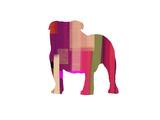 Bulldog Reproduction d'art par NaxArt