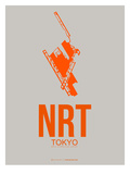 Nrt Tokyo Poster 1