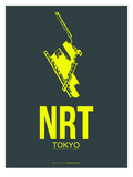 Nrt Tokyo Poster 2