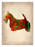 Scottish Terrier Watercolor 2