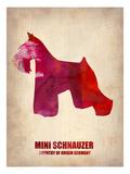 Miniature Schnauzer Poster