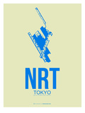 Nrt Tokyo Poster 3
