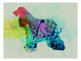 Afghan Hound Watercolor