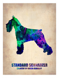 Standard Schnauzer Poster