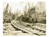 No Camp  CH Clemons Logging Co  Melbourne  WA  1918