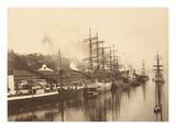 Harbor Scene Tacoma  Washington (1901)