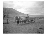 Horse-Drawn Wagon on Ranch  Near Priest Rapids  Yakima County  WA  1915