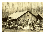 Camp 5  St Paul Tacoma Lumber Co  ca 1900