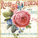 Rose Garden I