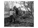 Plowing Team at Work  Grandview  WA  1918