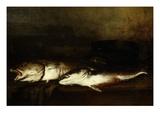 Sea Fish (Poissons De Mer)  1870 (Rf 118)