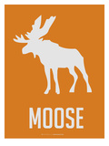 Moose White