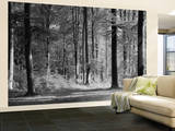 Mystical Forest Huge Wall Mural Poster Print