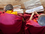 Young Monks Studying  Chimi Lhakhang Monastery  Pana  Bhutan