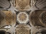 Spain  Castilla Y Leon Region  Salamanca Province  Salamanca  Salamanca Cathedrals  Ceiling