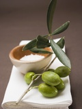 Olive Sprig with Green Olives  Sea Salt in Terracotta Bowl